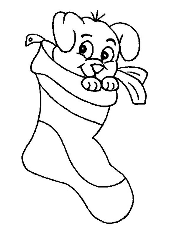 A Cute Little Puppy on Christmas Stocking Coloring Page A Cute