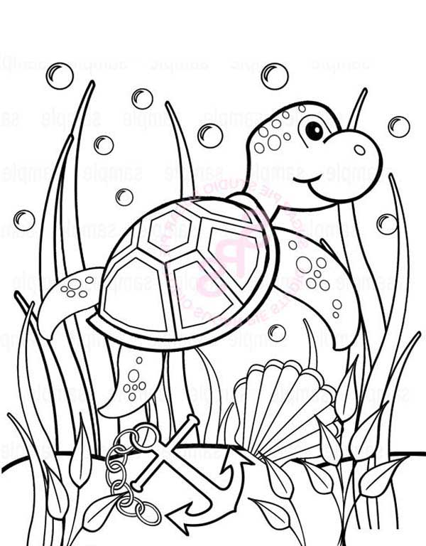 Baby Sea Turtle Play Between Seaweed free coloring sheet