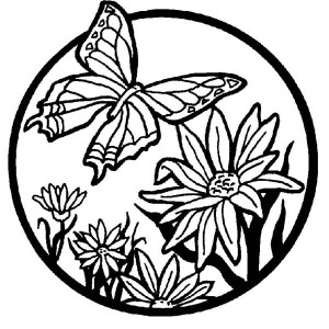 Beautiful Butterfly Illustration Coloring Page
