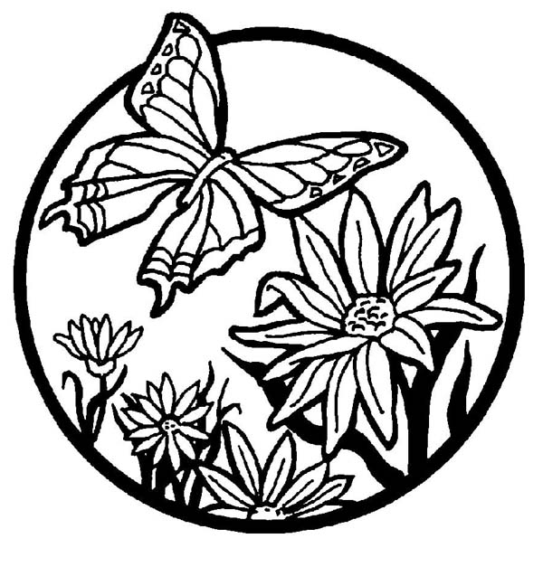 beautiful butterfly illustration coloring page - Beautiful Coloring Pages Print