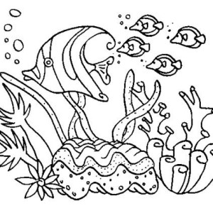 Beautiful Fish Animals Coloring Page