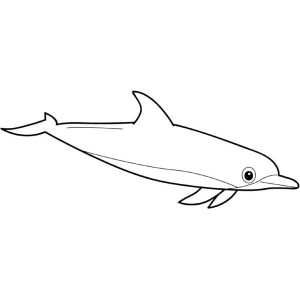 Cute Bottlenose Dolphin Sea Free Coloring Page
