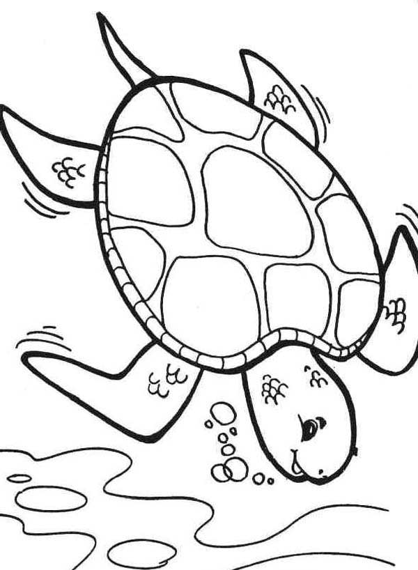 Diving Deeper Sea Turtle Coloring Page