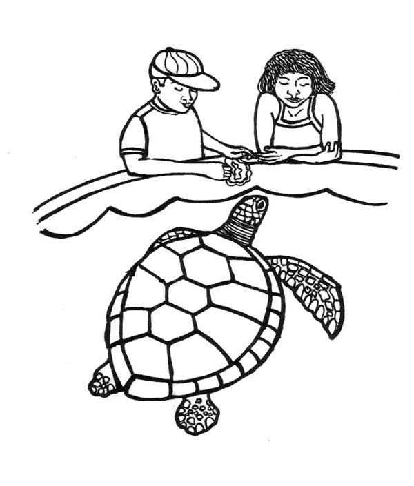Feeding Sea Turtle Coloring Page - Download & Print Online Coloring ...