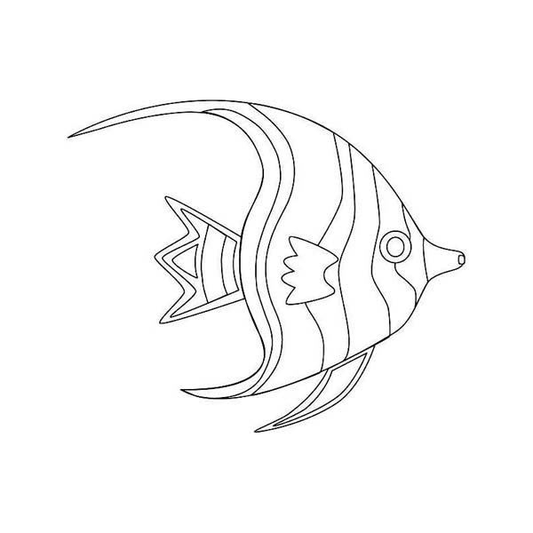 How To Draw A Sea Fish