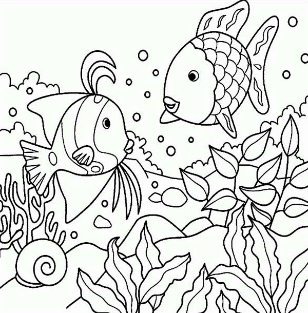 Free Rainbow Fish Sea Animals Coloring Page Download