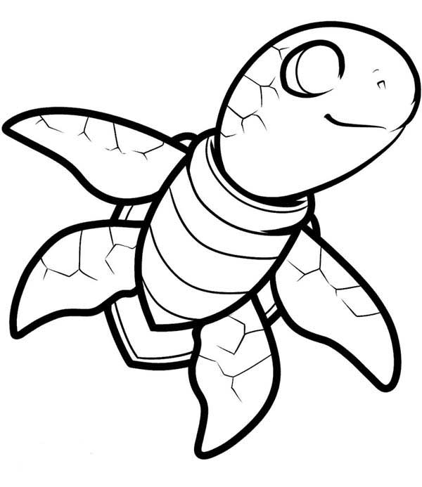Free Smiling Sea Turtle Coloring Page Download Print Online