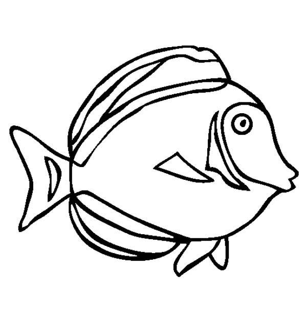 Japan Surgeonfish Free Sea Animals Coloring Page
