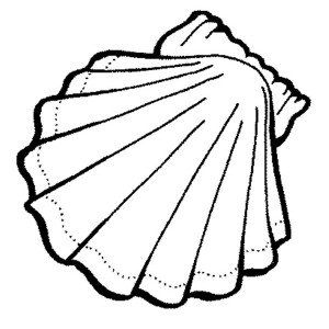 Lovely Clam Shell Free Sea Animals Coloring Page