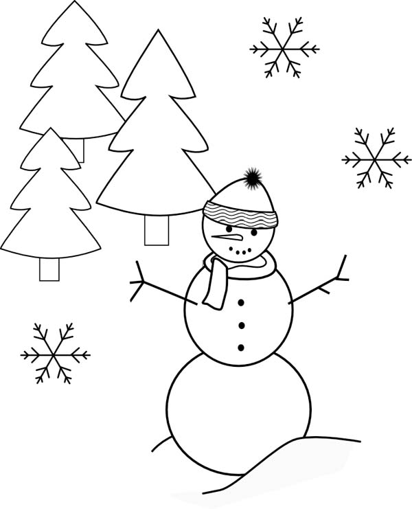 Mr Snowman Snowflake And Pine Trees Coloring Page