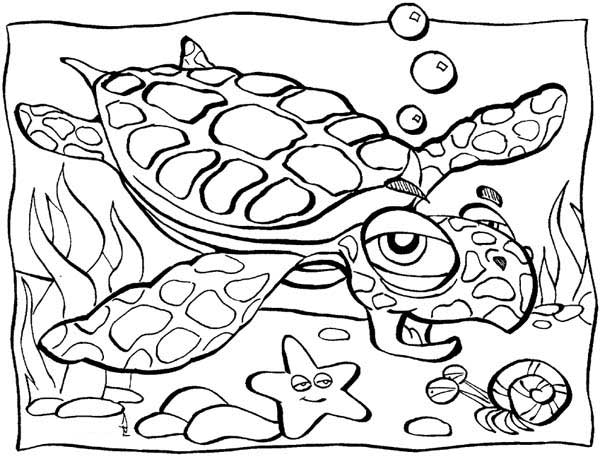 Old Sea Turtle Lifespan Coloring Page Download Print Online