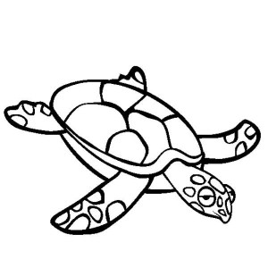 Sea Turtle Crawl Free Coloring Page