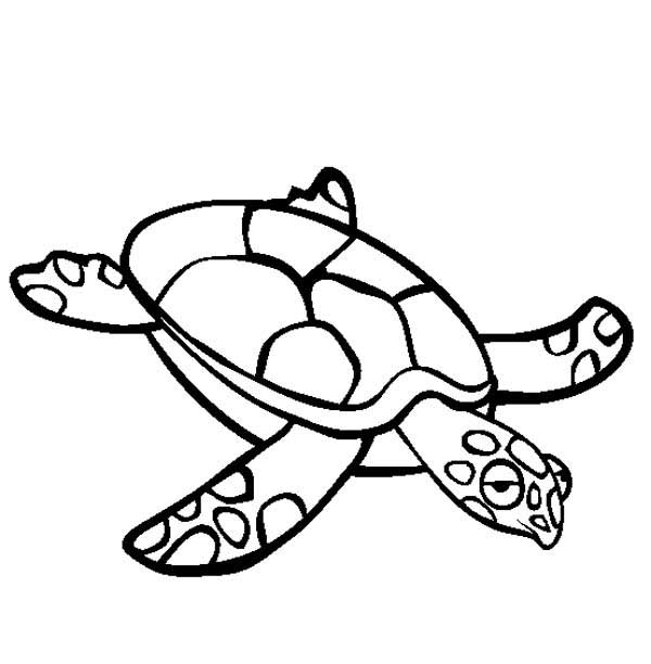 Sea Turtle Crawl Free Coloring Page Download Print Online