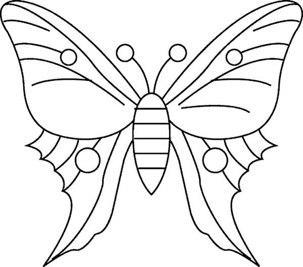 simple butterfly coloring pages - simple butterfly drawing coloring page simple butterfly