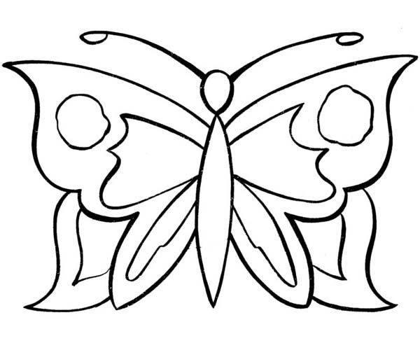 Butterfly Simple Graphic Pattern Coloring Page PageFull Size