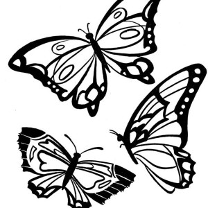 three butterflies with beautiful complexion coloring page - Coloring Pictures Of Butterflies
