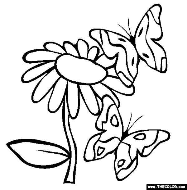 butterfly two butterflies surrounding the flowers coloring page two butterflies surrounding the flowers coloring