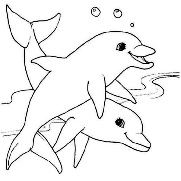 two cute dolphin sea animals coloring page - Cute Animal Coloring Pages
