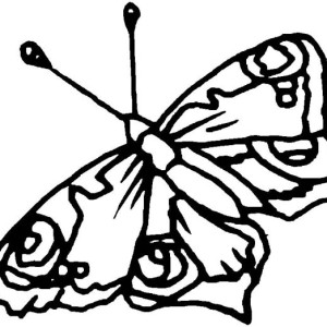 Unique Butterfly with Crisp Wings Coloring Page