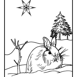 Wild Rabbit on Winter Season Coloring Page