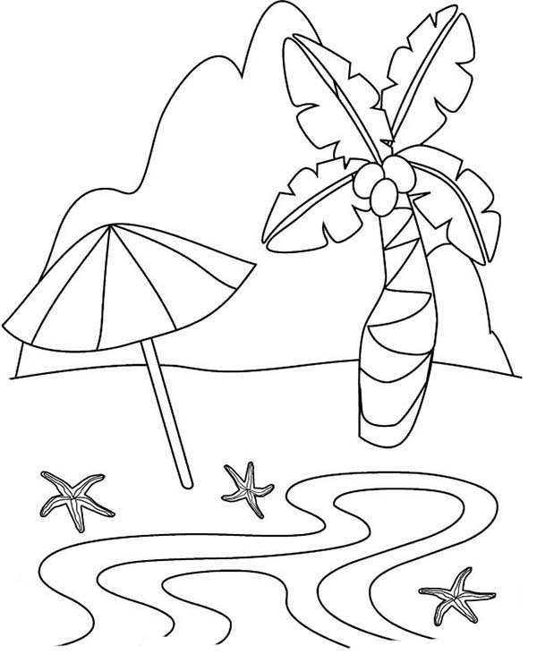 A Beautiful Tropical Sandy Beach Coloring Page A
