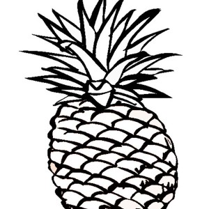A Delicious Hawaiian Smooth Cayenne Pineapple Coloring Page With Drawing Color