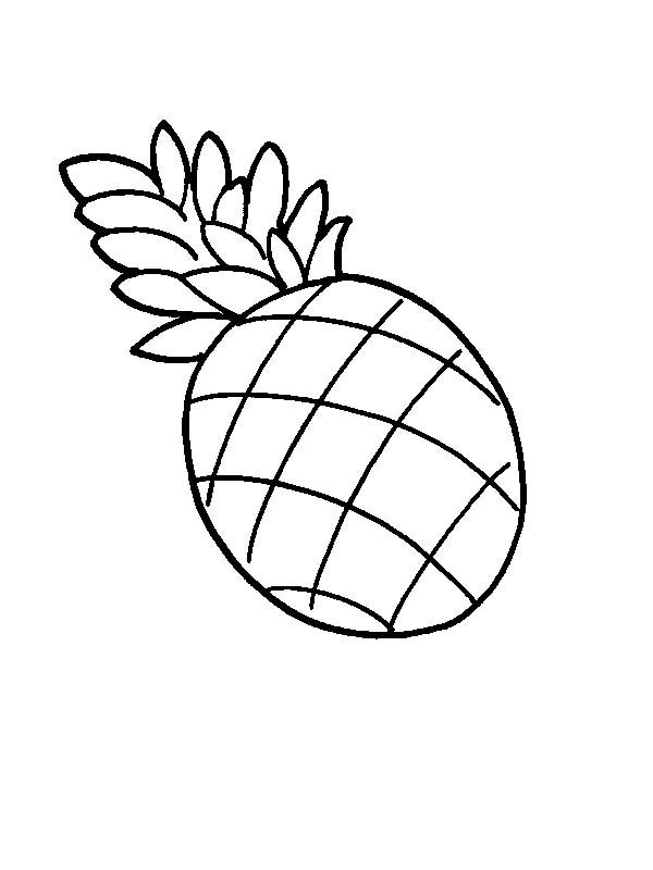 A Drawing of Pernambuco Pineapple