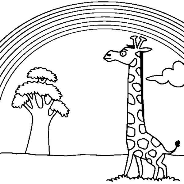 A Giraffe Watching Beautiful Rainbow Coloring Page - Download ...