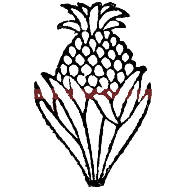 a less sweet queen pineapple from south africa coloring page - Africa Coloring Pages
