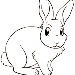 A Lovely Drawing of Little Bunny Coloring Page