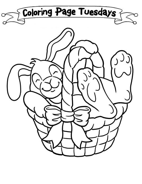 A Sleepy Bunny Inside the Easter Basket Coloring Page - Download ...