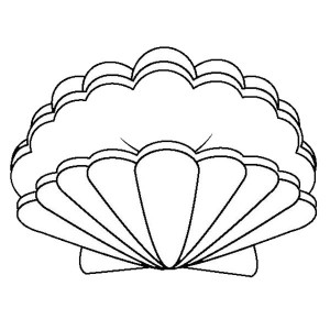 An Open Lions Paw Seashell Coloring Page