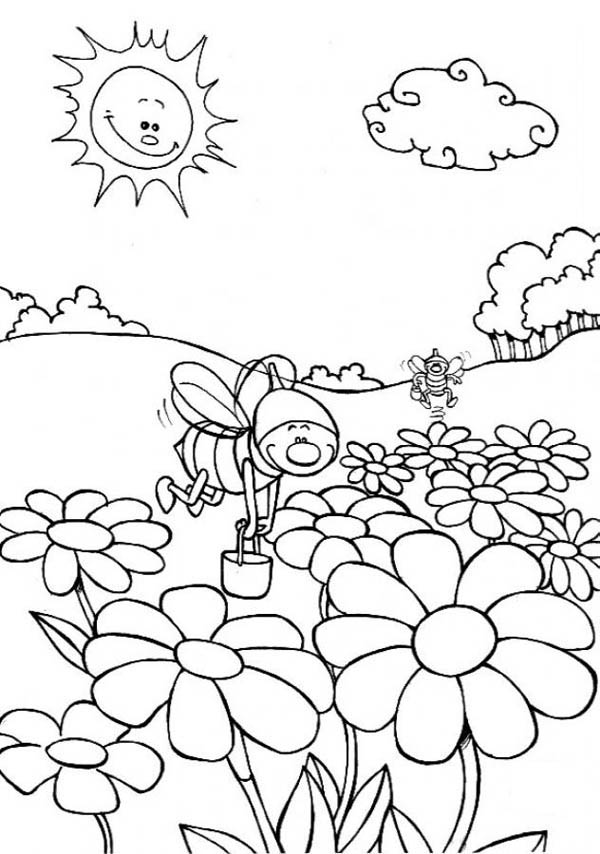 Bumblebee Activities On The Flowers Field Coloring Page