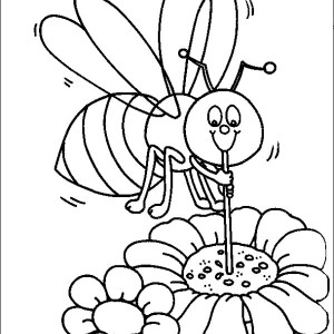 Bumblebee Sucking Honey Using Straw Coloring Page