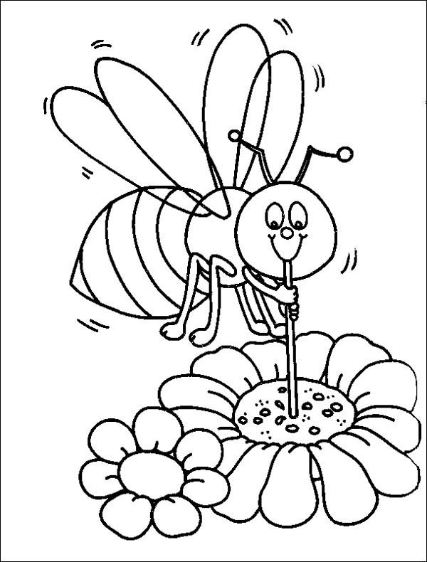 Bumblebee Sucking Honey Using Straw Coloring Page Download