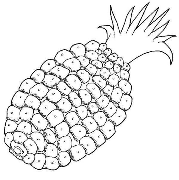 Pictures patterns for coloring pages patterns for coloring page 5 free