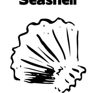 Lions Paw Seashell in Lineart Coloring Page
