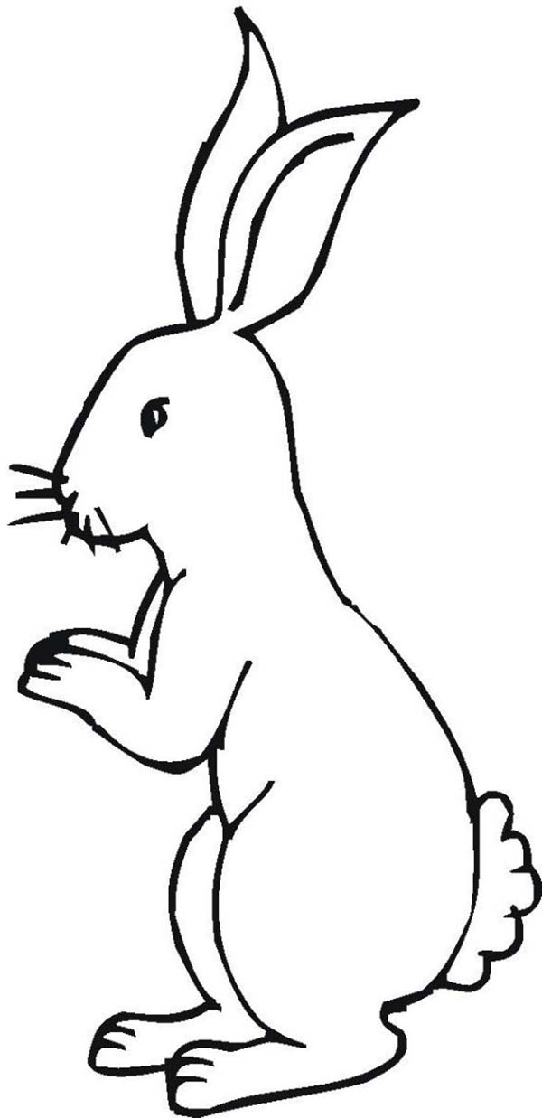 little foot coloring pages - little bunny standing on his feet coloring page download