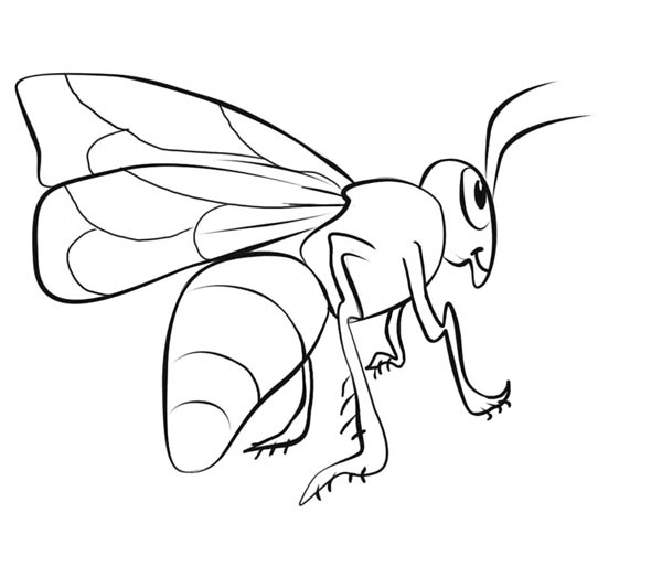 Realistic Bumblebee Illustration Coloring Page