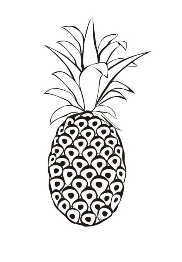 Red Spanish Pineapple From Venezuela Coloring Page
