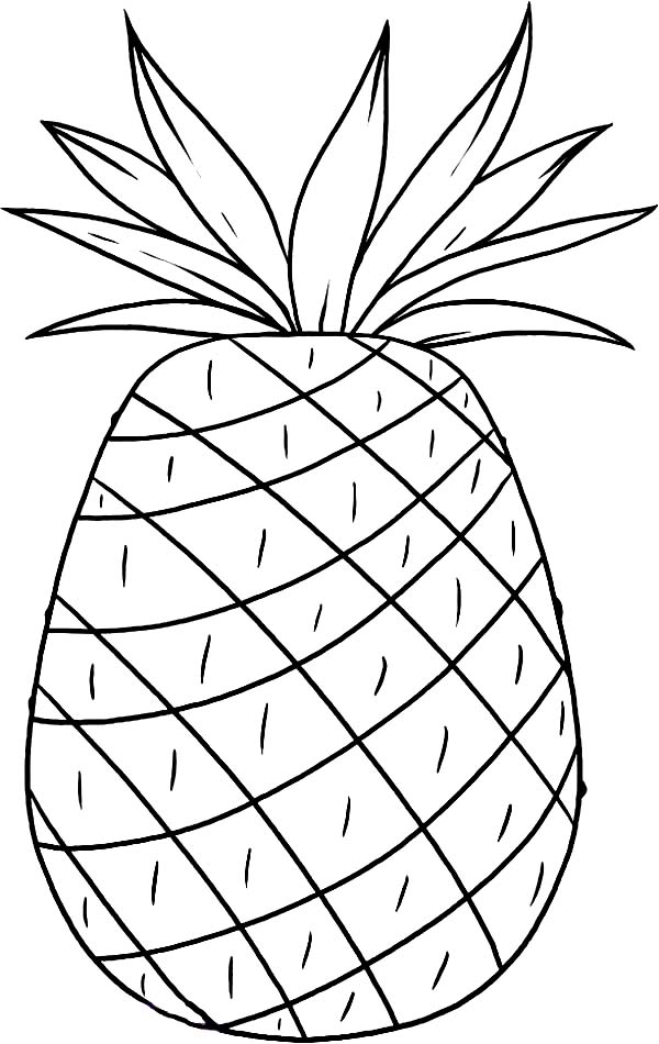 Smooth Cayenne Pineapple from Hawaii Coloring Page Download