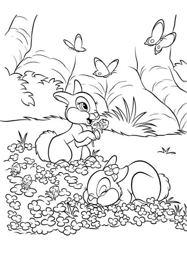 Thumper and Miss Bunny Playing on the Flower Field Coloring Page ...