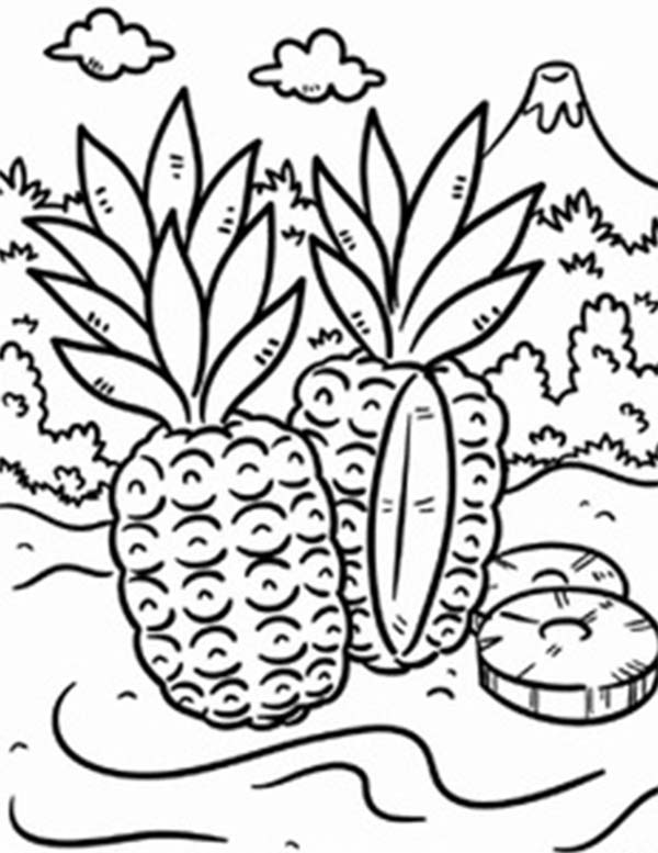 Wild Pineapple in a Tropical Island Coloring Page Download Print