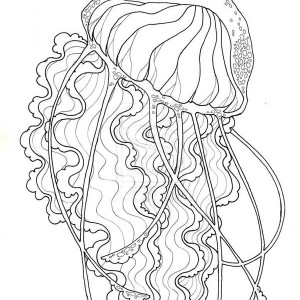 Download Online Coloring Pages For Free Part 133