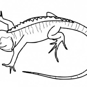 Download Online Coloring Pages for Free - Part 136