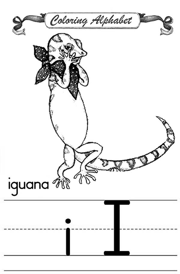 Coloring Alphabet I For Iguana Coloring Page For Kids