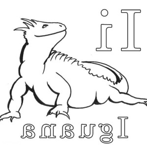 iguana coloring pages 11