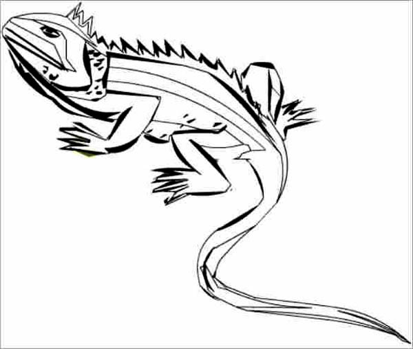 iguana line art coloring page for
