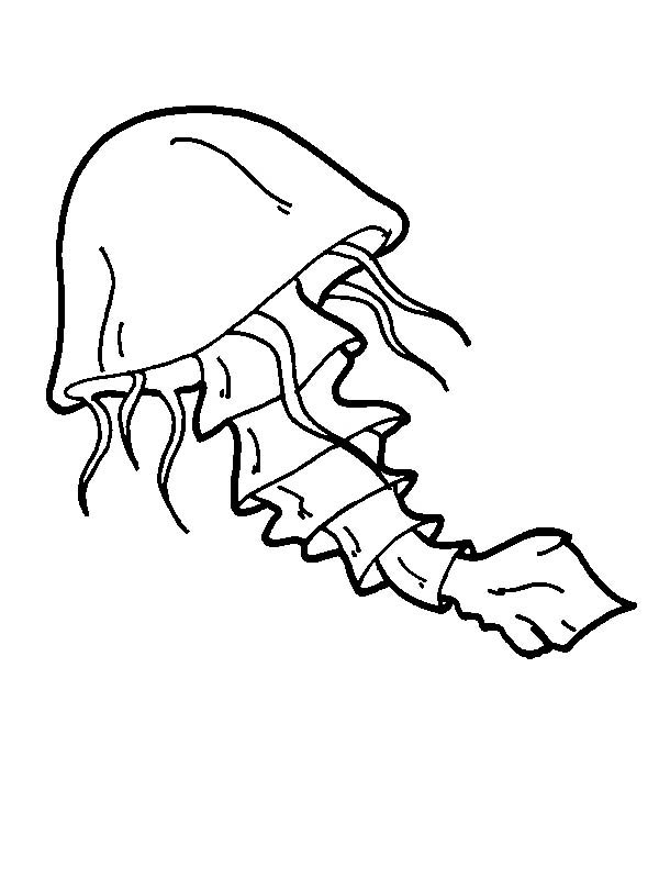 Jellyfish With A Tail Coloring Page