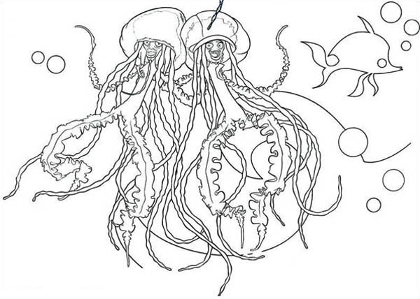singing jellyfish coloring page for kids Download Print Online